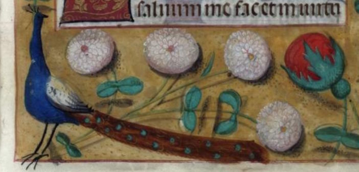 What would Christmas dinner have looked like in medieval times?